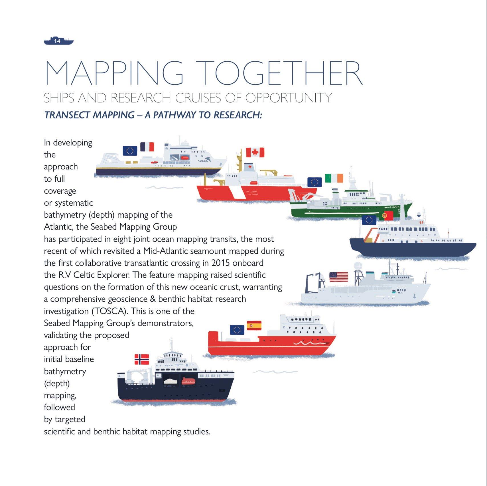 aora-marine-ocean-illustration-ruth-graham-design