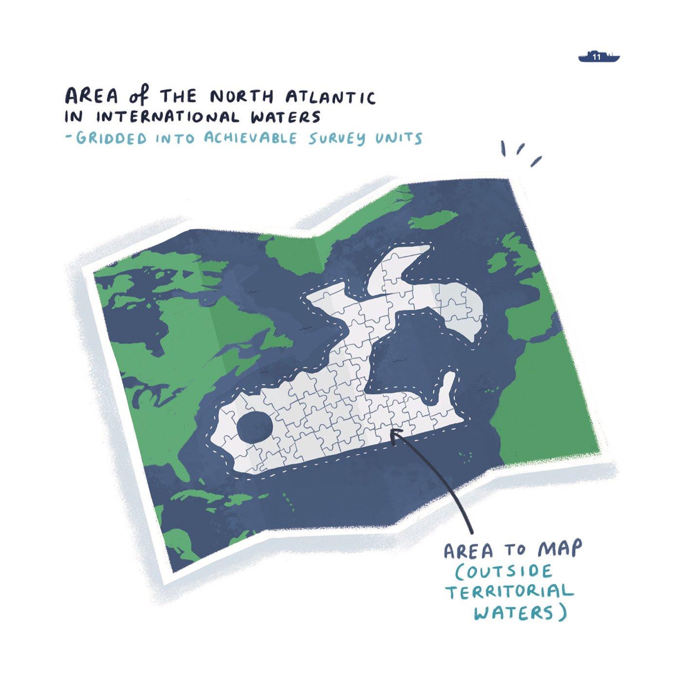 aora-marine-ocean-illustration-ruth-graham-illustrator-letterkenny