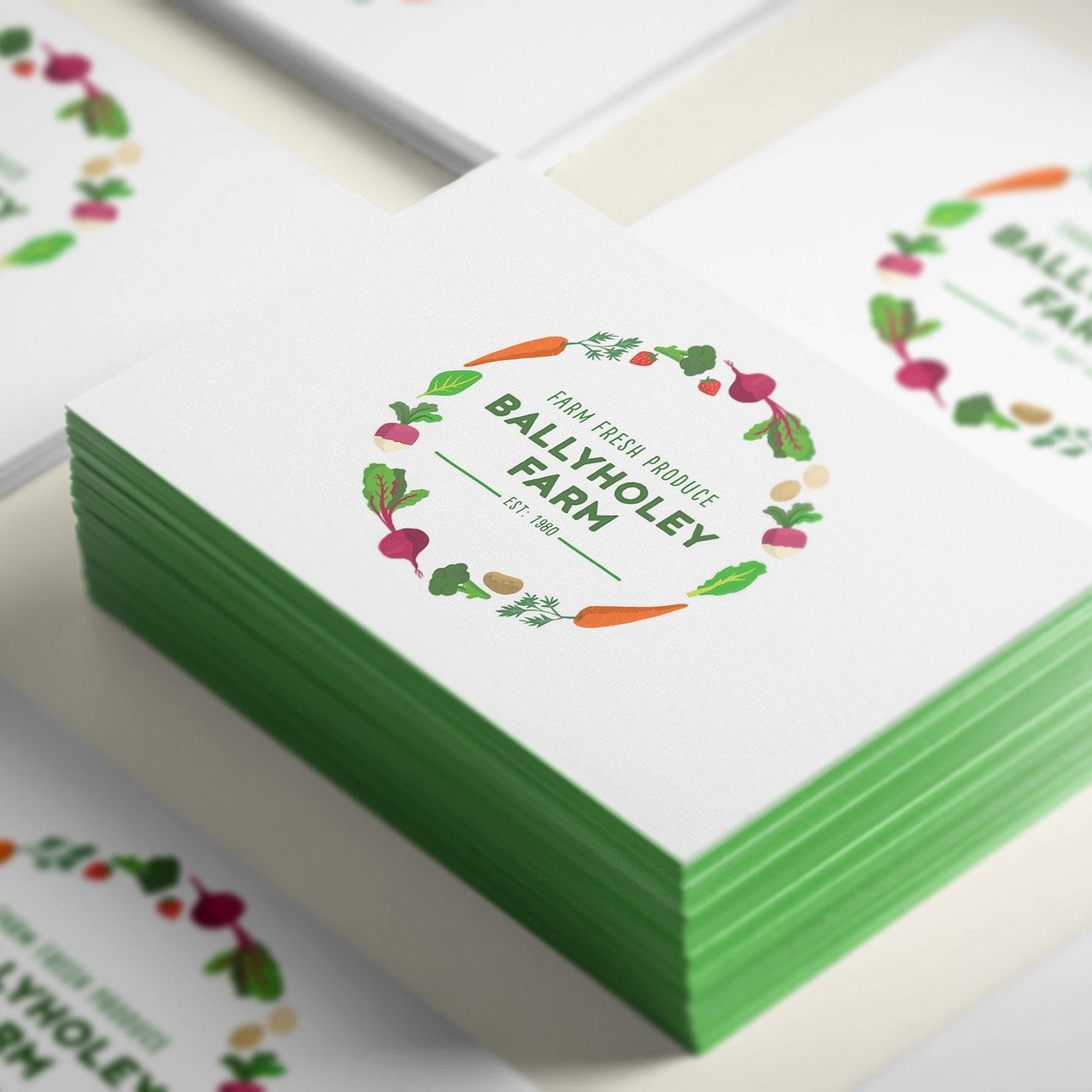 ballyholey-farm-branding-ruth-graham-illustrator
