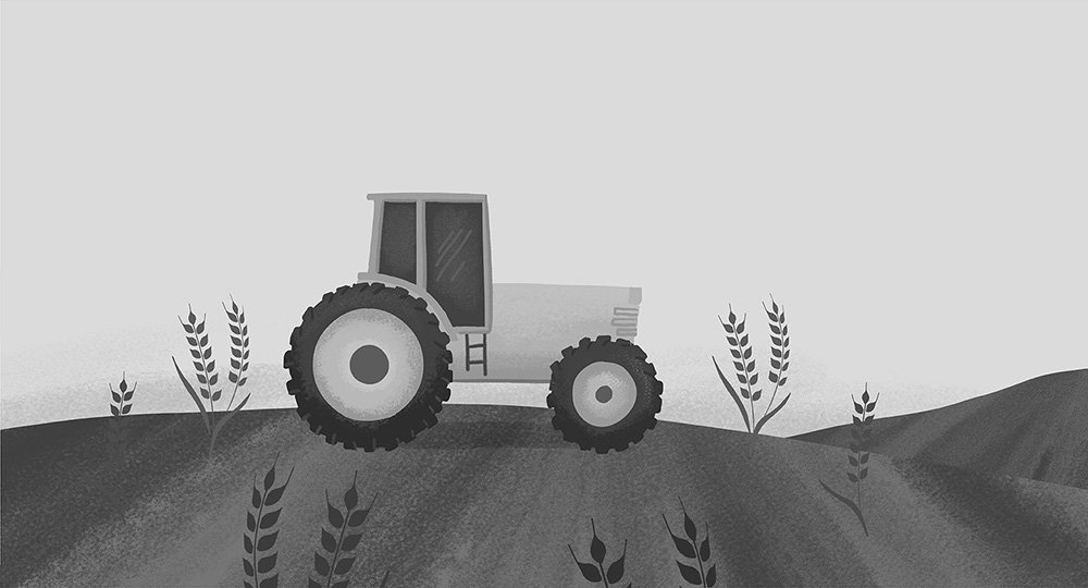 irish-distillers-nature-illustration-animation-ruth-graham-illustrator-letterkenny