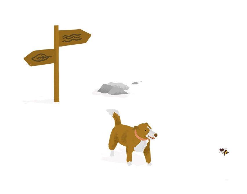 nuig-environmental-illustration-epa-ruth-graham-design-illustrator